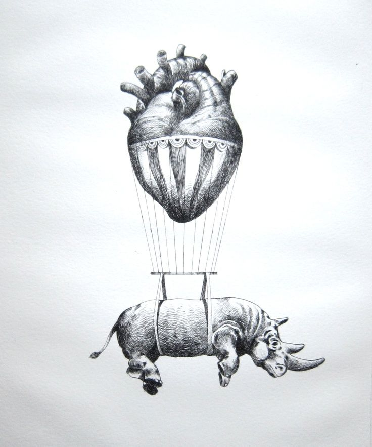 """""""Love"""" by Otto D'Ambra. (""""Love lifts us up where we belong..."""") Not the rhino, though"""