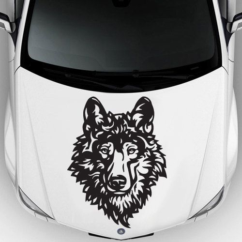 Best Car Decal Hood Sticker Images On Pinterest Car Decals - Best automobile graphics and patternsbest stickers on the car hood images on pinterest cars hoods