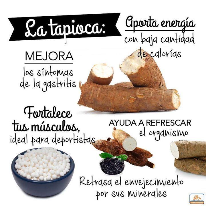 Propiedades y beneficios de la Tapioca.