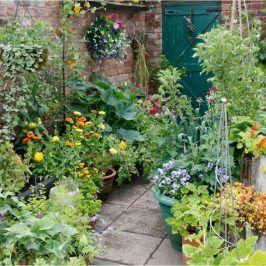 40 diy gorgeous patio vegetable garden containers ideas a garden rh pinterest com