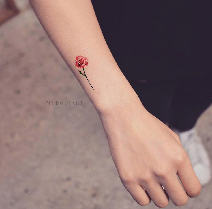 Carolyn Small Watercolor Realistic Single Red & Blue Rose Temporary Tattoo