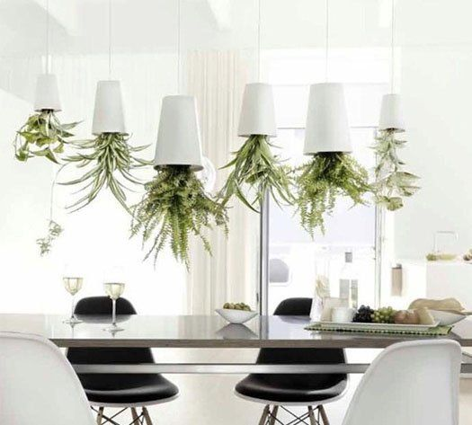 Grow indoor plants upside down with Sky Planters