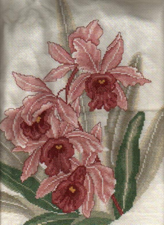Just Cross Stitch Patterns Free | ... of cross stitch cross stitch projects free cross stitch patterns index