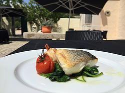 Restaurante Julinha: o jardim dos sabores