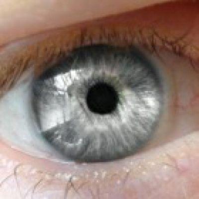 Zilveren oog