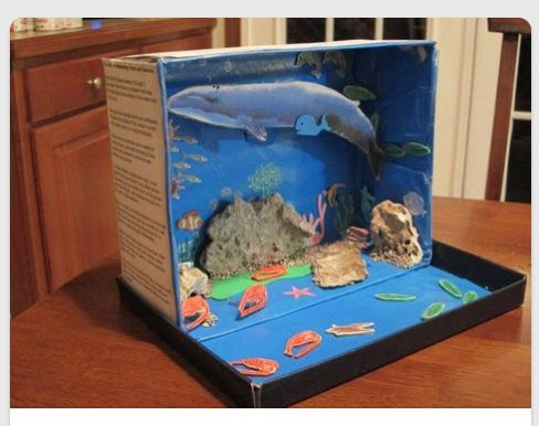8 Best Education Dioramas Images On Pinterest School Projects