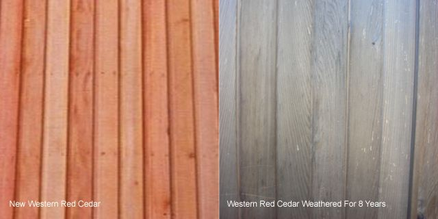 Western Red Cedar is by far the most popular cladding for garden rooms, this is because it requires no ongoing maintenance and has a long lifespan. We often write on this guide how Western Red Ceda...