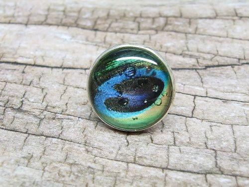 Üveglencsés gyűrű - Páva tollas