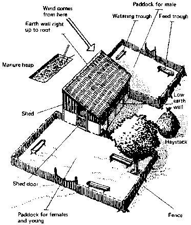 Complete design of a goat farm....kinda