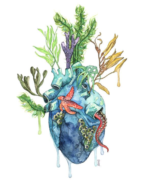 "Watercolor Anatomical Heart Painting - Print titled ""Overflowing"", Anatomical Heart, Botanical, Human Heart, Ocean Heart, Watercolor, Sea"
