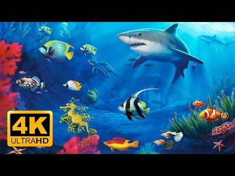 Enjoy the peaceful aquariums & tanks views in beautiful 4K UHD. Helps Relax & Fall Asleep FAST! 2 hours long. Relax with beautiful fishes, Manta rays, Sea an...