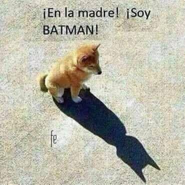〽️ ¡En la madre! Soy BATMAN !!