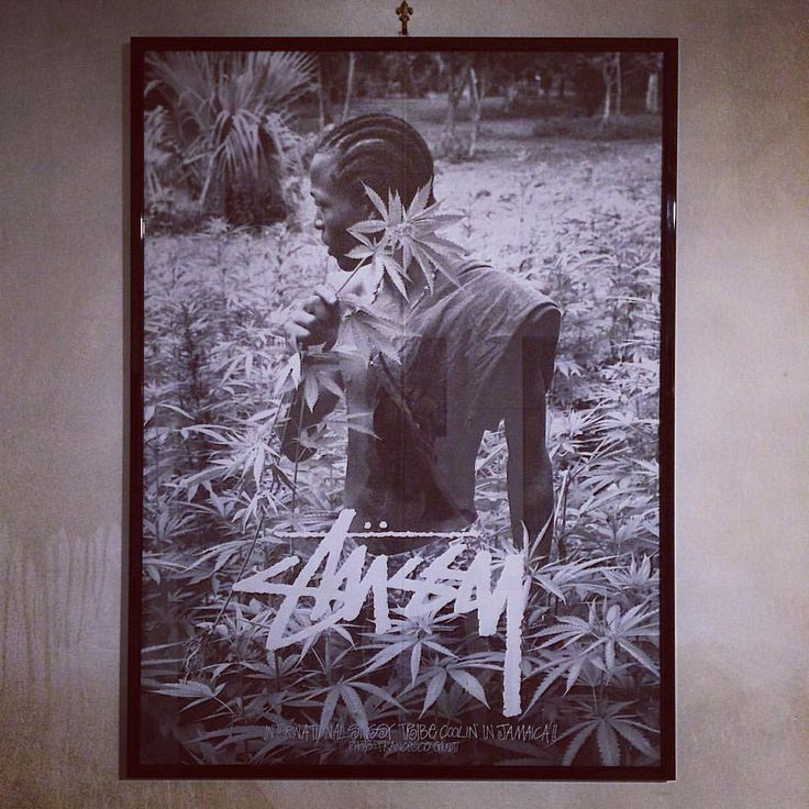 """Shoelosophy Sneakers su Instagram: """"another #brickonthewall @shawnstussy this is our personal tribute to the #best #brand in the #world, thanks for all you did it in your great life. #Stussy @stussy @studiocanvas #portait #francescogiusti #jamaica #picture #shoot #dread #marijuana #wildlife #display #wall #art #shoelosophy #quadro #sdouble @stussyjapan @stussydeluxe"""""""