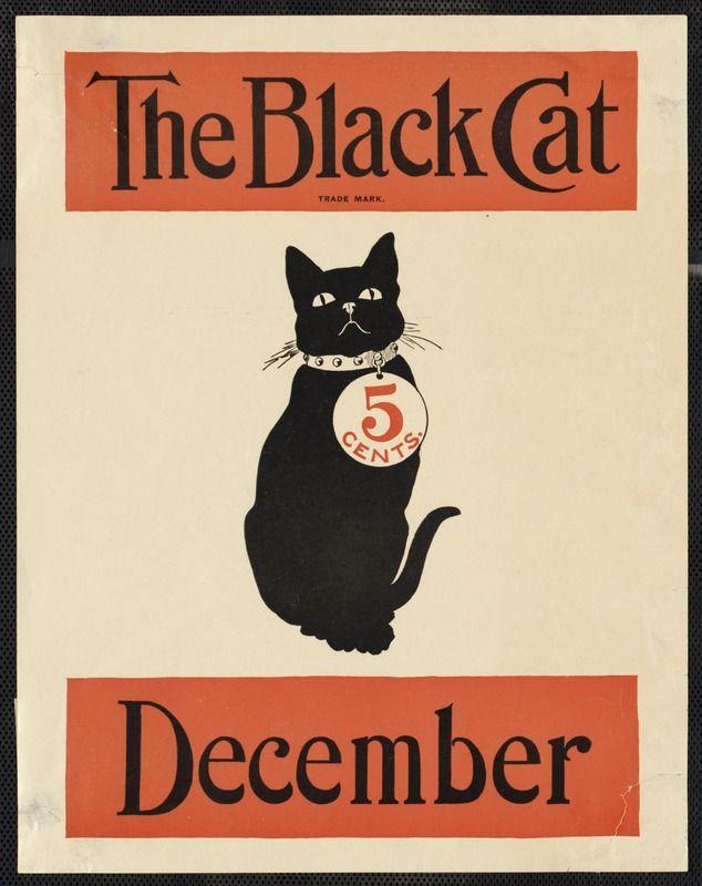 The black cat December