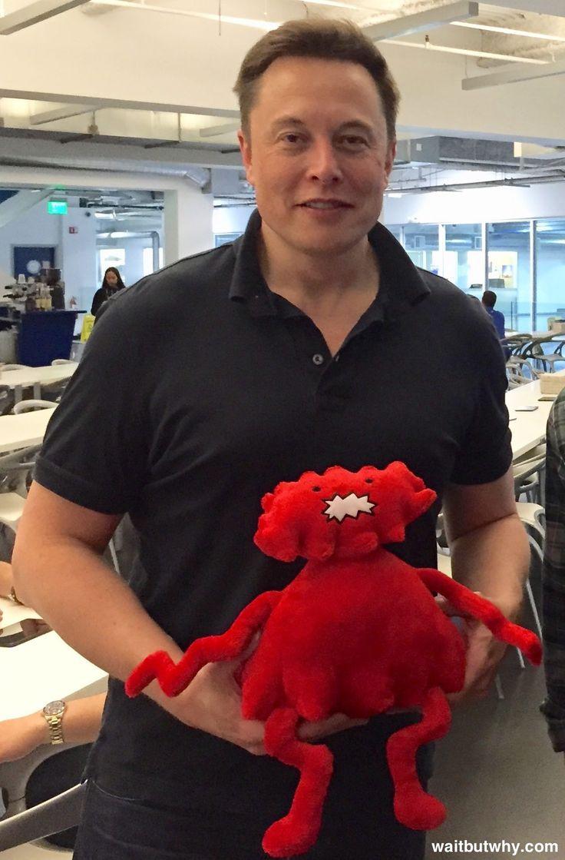 Elon Musk: The World's Raddest Man|Tim Urban