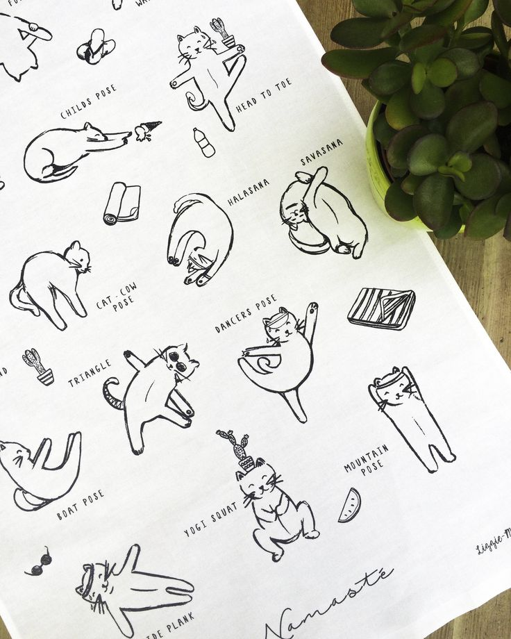 Hot Yoga for Cats Funny Illustrated Tea Towel by LizzieMayDesign on Etsy