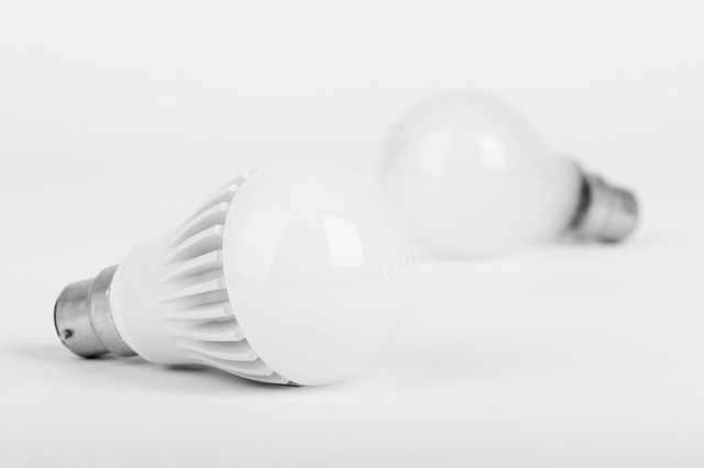LED bulbs: Are They Worth It? - Big Day Coming