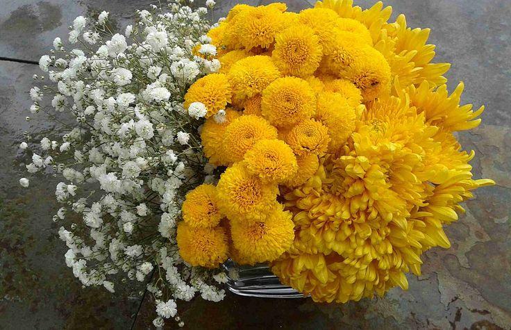 Crisantemos y gipsofila en florero-cubo vidrio.
