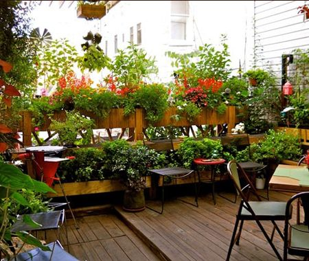 Small Rooftop Patio Filled With Plants | via Apartment Therapy | House & Home