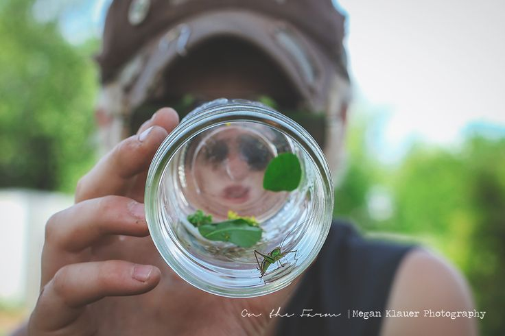 Growin & Crowin | A personal farm / homesteading blog of Megan Klauer Photography | Free Fun Friday : Free activities to do with your kids this Summer | A Backyard Bug Hunt