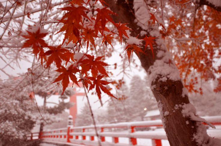 紅葉と雪の平安神宮