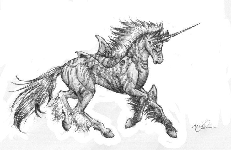 Fantasy - Unicorn Hybrid by Chaos-Flower on DeviantArt