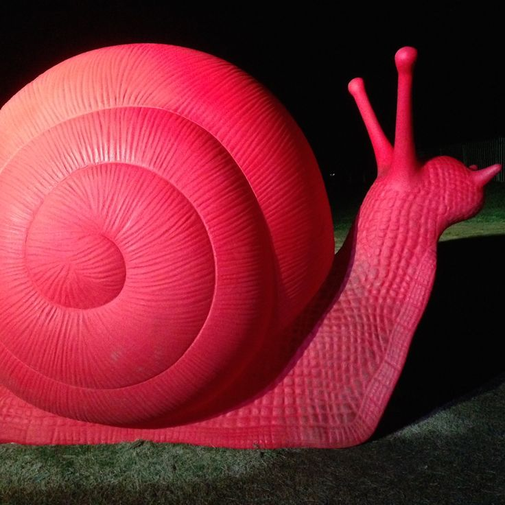 Massive Snail installation.......love it!