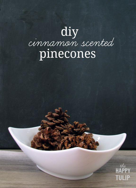 Amp up pinecones