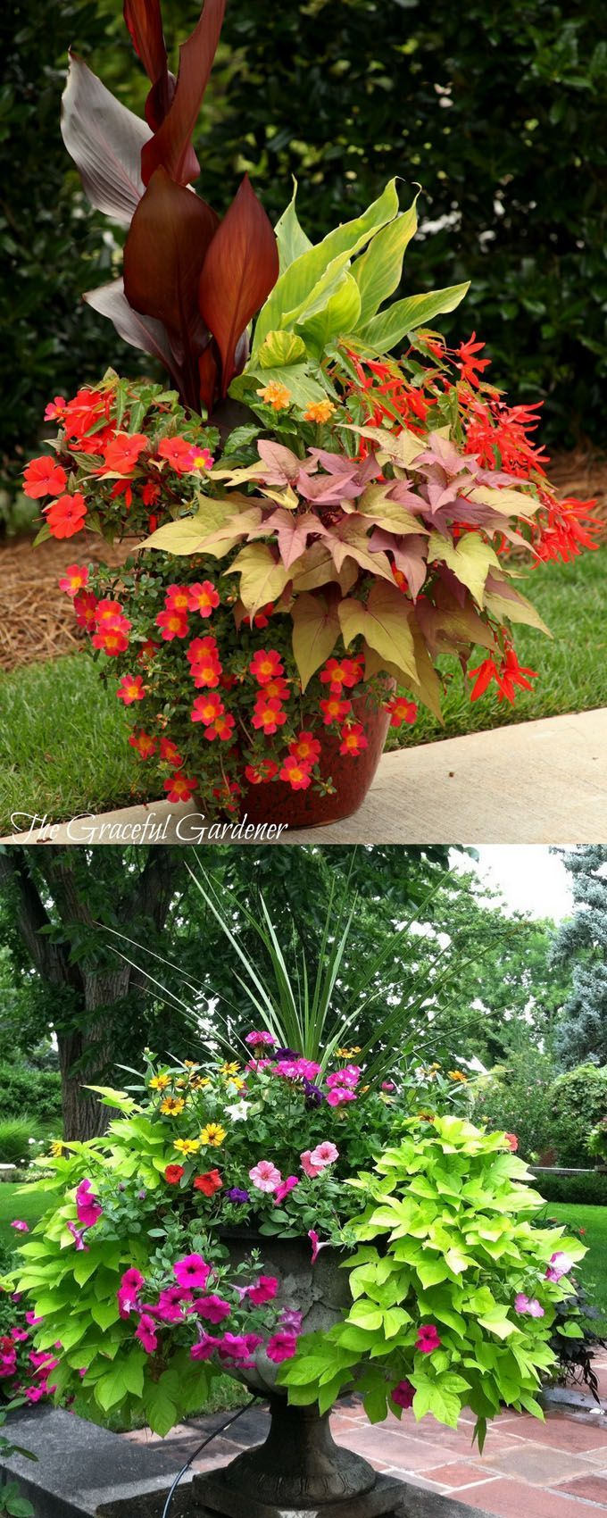 Garden Container Ideas 17 best images about outdoor flower container ideas on pinterest 24 Stunning Container Garden Planting Designs