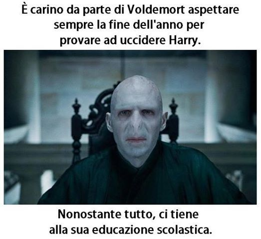 Meme Harry Potter Voldemort