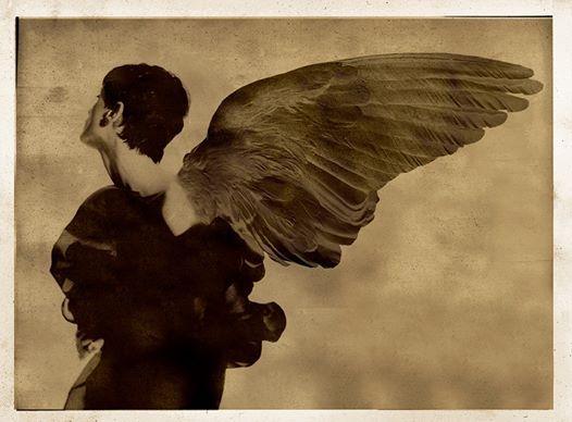 Photo: angelo caduto 26. Serie angeli caduti. Plaubell 20/25 300nn pellicola polaroid. 2 Quadra e un nido d'ape. . ali e filtratura digitali.16 Giugno 2014. Milano
