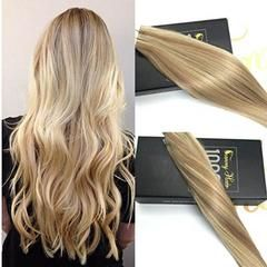 Tape in Blonde Highlighted Human Hair Extension #16/22