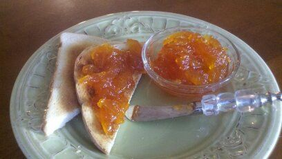 Grapefruit marmelade made with only the peel and NO pectin!