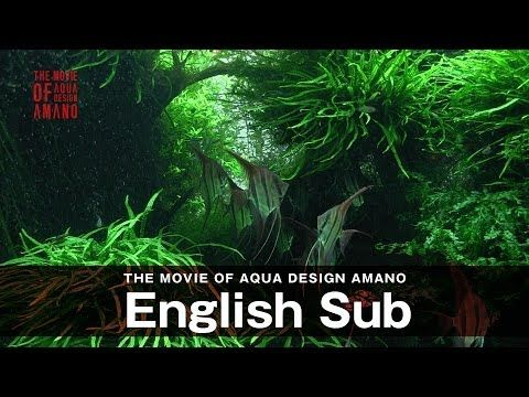 THE BOOK OF AQUA DESIGN AMANO - The latest General product catalog ||| ADA - Aqua Design Amano Co., Ltd