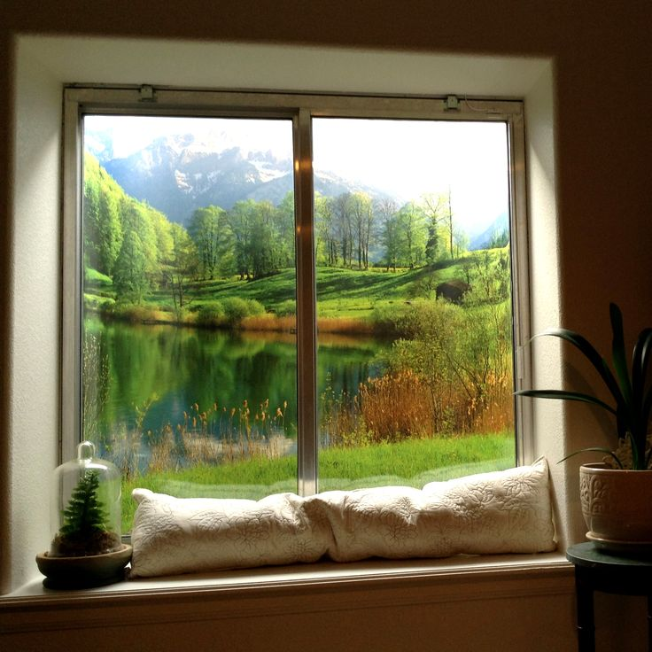 find this pin and more on window well scenes by lindafreda0579