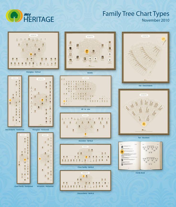 Todos os tipos de gráfico já estão disponíveis em MyHeritage.com