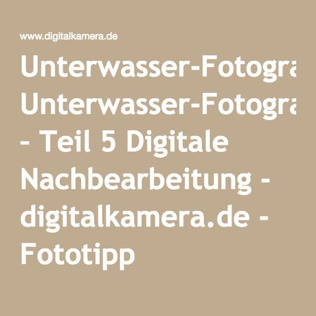 Unterwasser-Fotografie – Teil 5 Digitale Nachbearbeitung - digitalkamera.de - Fototipp
