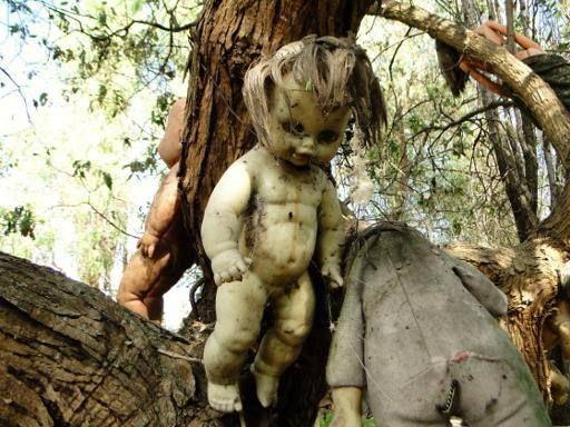 L'Isola delle bambole, vicino ai canali di Xochimilco a sud di Mexico City, è la casa di centinaia di bambole sinistre. Scoperta negli anni '90, sembra che l'isola sia dedicata alla memoria di una bambina affogata nel canale anni fa