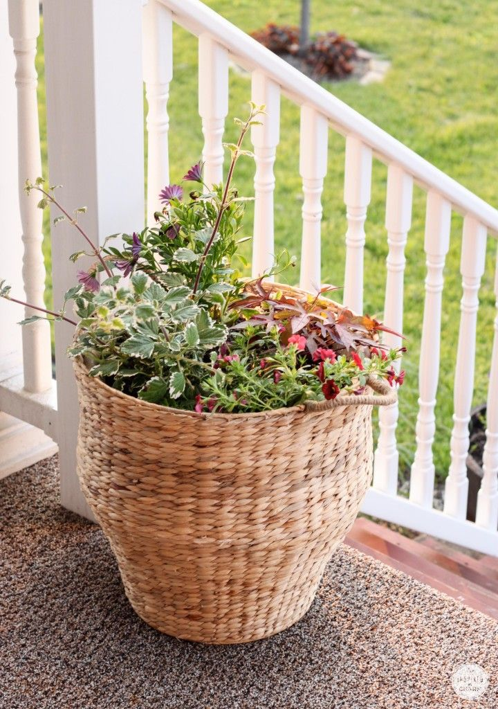 Lose the plastic, plant in baskets!
