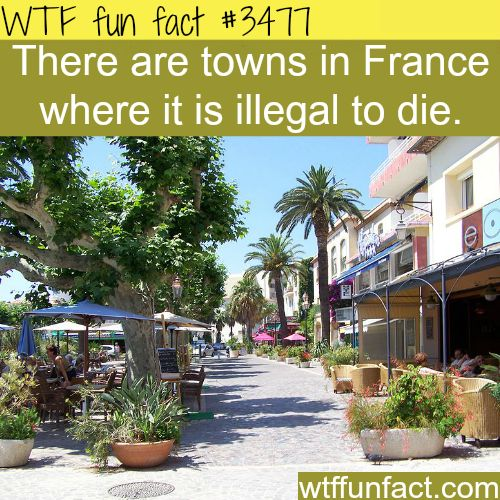 Towns in France where it's illegal to die - WTF fun facts - Really?  What are you going to do, arrest me?