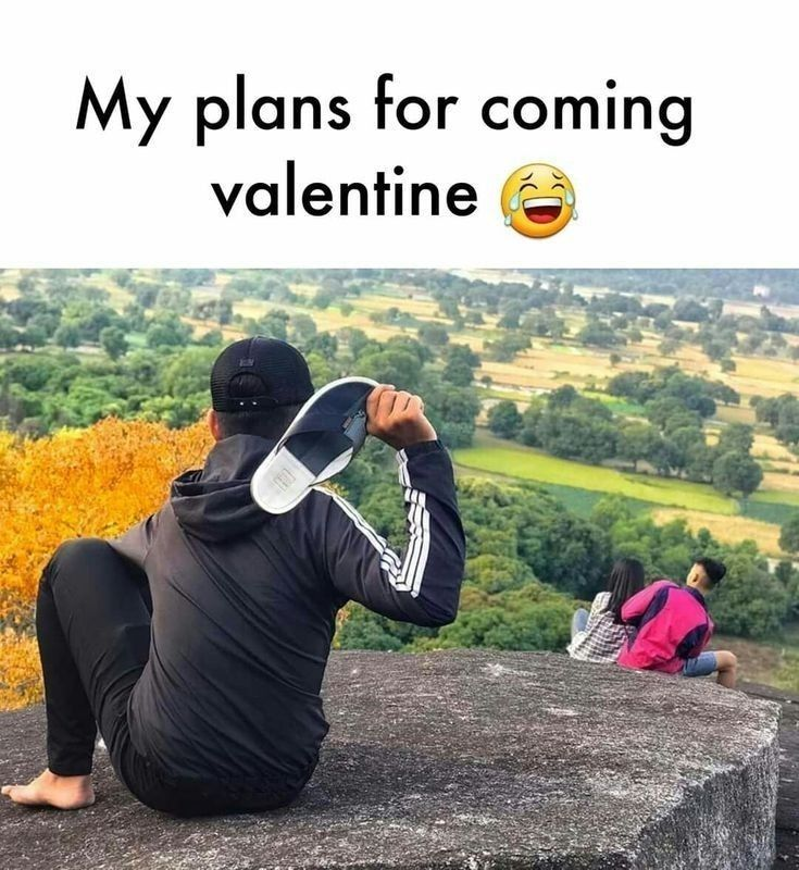 Plans For Coming Valentine S Day Really Funny Memes Fun Quotes Funny Crazy Funny Memes