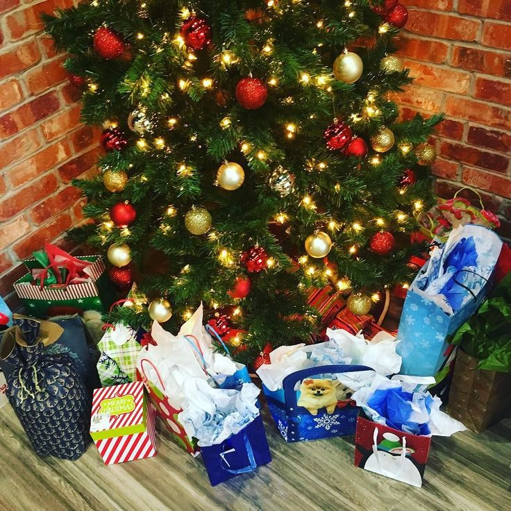 The office Secret Santas did a fantastic job this year! What is your favorite office holiday tradition? Comment and share!
