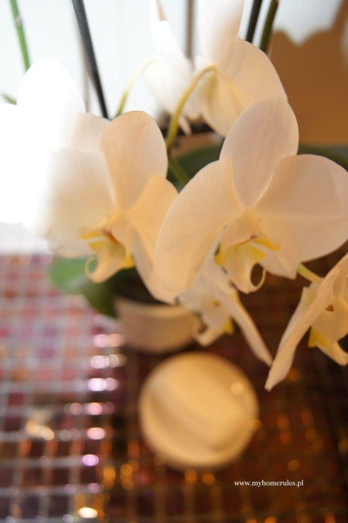 stylish bathroom flower orchid http://myhomerules.pl/2016/02/28/na-co-zwrocic-uwage-i-czego-unikac-urzadzajac-pokoj-kapielowy/