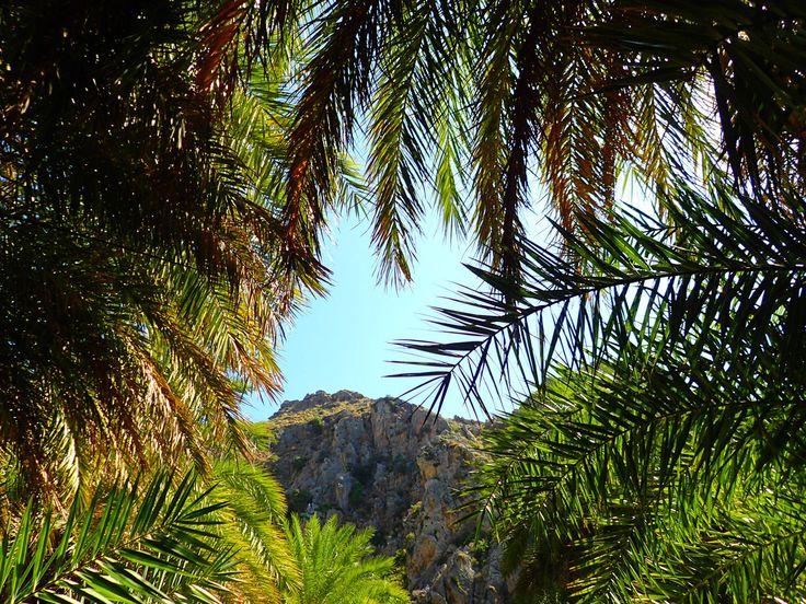 Rondwandelingen op Kreta Griekenland   Rondwandelingen op Kreta Griekenland:Het is best moeilijk om nieuwe rondwandelingen door de bergen van Kreta te ontwikkelen, want met een kloof wandeling lopen we dan vaak dezelfde weg weer terug. Toch hebben we voor uweer een aantal unieke rondwandelingen weten te creëren, elke rondwandeling is weer anders en origineel.   Laatste