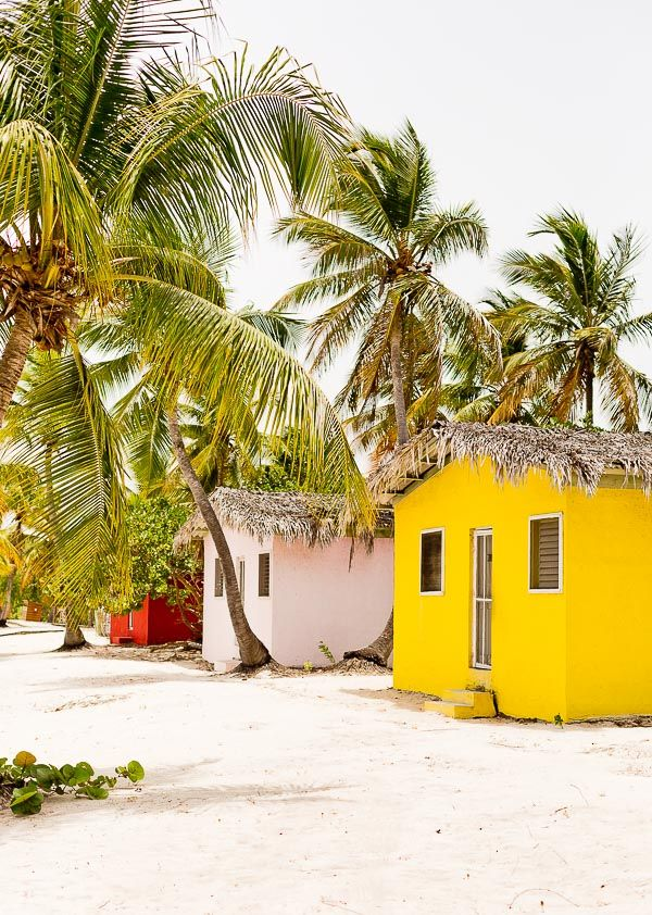 an analysis of my vacation in the dominican republic Known for its tropical climate and relaxed atmosphere, the dominican republic has a rich history keep reading to learn about the culture and.