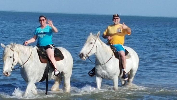 Beach horse back rides bucket list St Petersburg FLorida