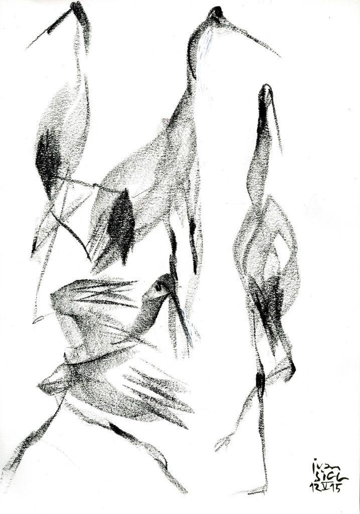 Il fallait voir Luc Petton promener à Chaillot ses quatre grues de Mandchourie (du Zoo d'Amiens). Dans le spectacle Light Bird, es danseurs Sun-A Lee, Yura Park et Gilles Noël étaient presque aussi extraordinaires que les quatre grandes danseuses sur...