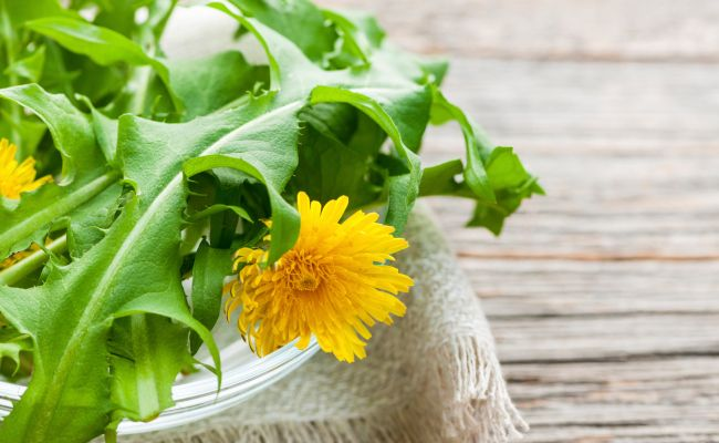 4 Wild Recipes To Celebrate Spring | Care2 Healthy Living