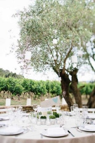 1000 images about deco mariage exterieur wedding decoration outdoor on pinterest receptions wedding and flower - Mariage Mas Provencal