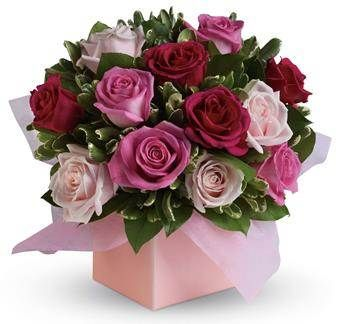 Send Roses | Online Red Roses | Valentines Red Roses Bunch